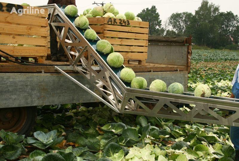 yeni GRIMME Transporter dlya uborki kapusty patates toplama makinesi