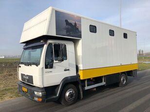 MAN LE8-180 at taşıma kamyon