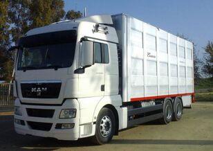 SCANIA R 490 hayvan nakil aracı